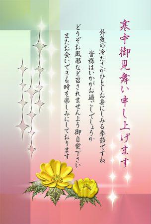 寒中見舞いデザイン・福寿草・カラー
