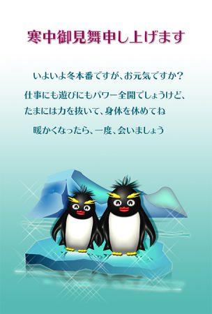 寒中見舞いデザイン・ペンギン・カラー