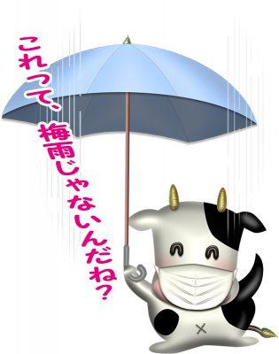 梅雨の走りの牛さん