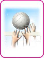 バレーボールのデザイン