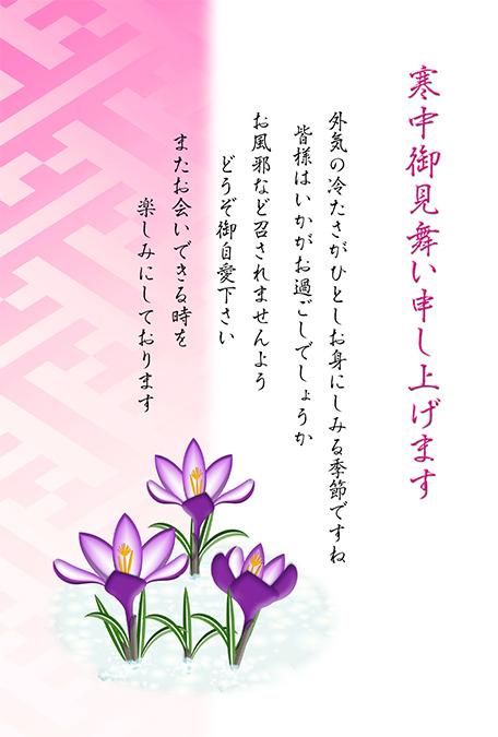 クロッカスの花の寒中見舞いテンプレート無料ダウンロード